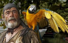 Click image for larger version  Name:Pirate parrot_1479299c.jpg Views:174 Size:27.5 KB ID:105085