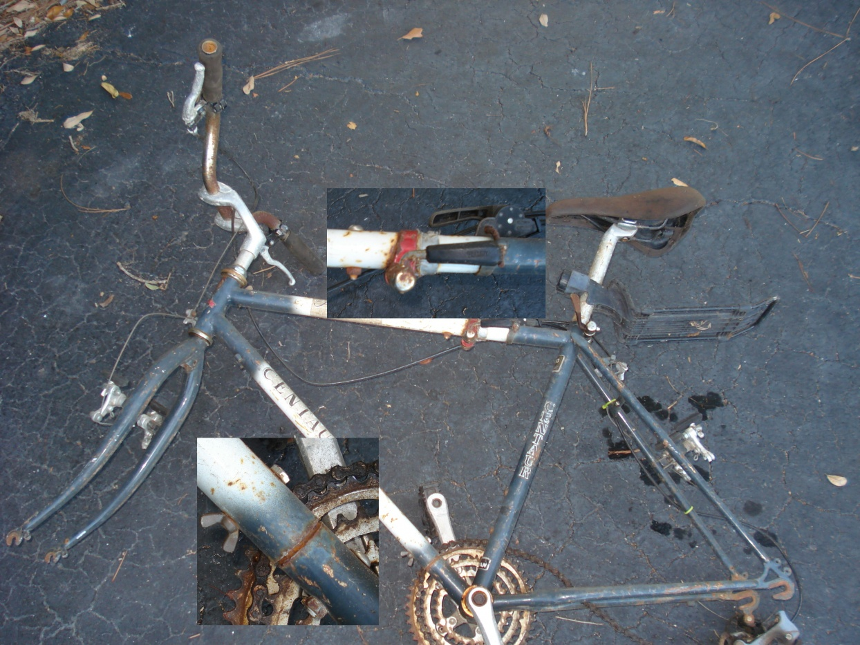 Click image for larger version  Name:first fold bike DSC03489b.jpg Views:129 Size:434.9 KB ID:105101