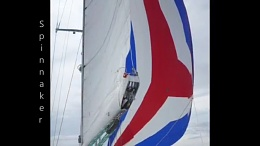 Click image for larger version  Name:Songlines Under Spinnaker.jpg Views:137 Size:81.7 KB ID:106123