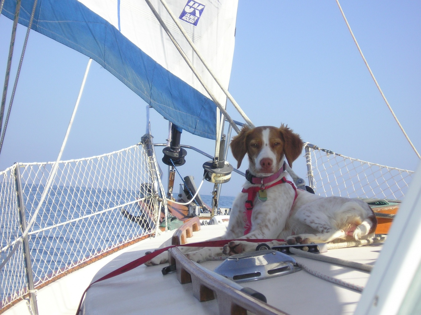Click image for larger version  Name:On Watch Under Sail.jpg Views:55 Size:422.0 KB ID:108486