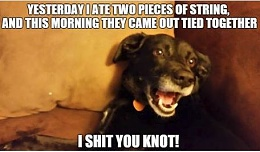 Click image for larger version  Name:i **** you knot.jpg Views:359 Size:30.4 KB ID:108961