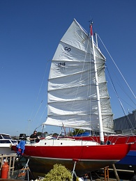 Click image for larger version  Name:Sail Up 1.JPG Views:818 Size:334.6 KB ID:109372