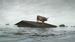Click image for larger version  Name:O_Brother_cow_shed.jpg Views:125 Size:388.4 KB ID:110453