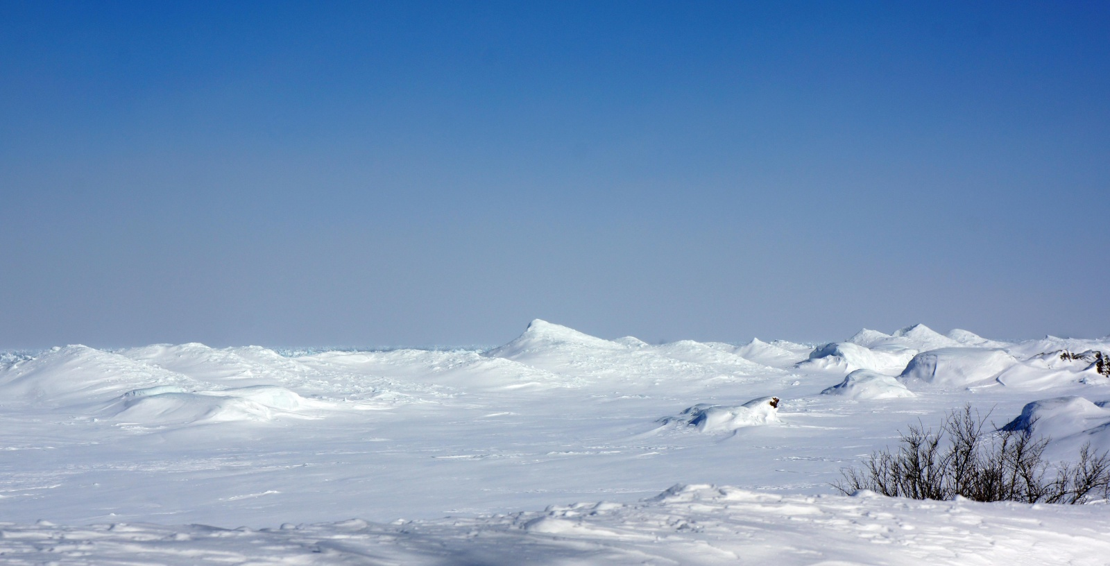 Click image for larger version  Name:Lake Superior Ice Wave Cones 03-02-2014.jpg Views:48 Size:278.9 KB ID:112153