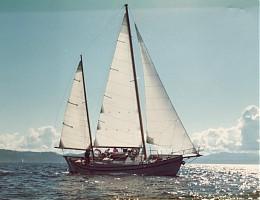 Click image for larger version  Name:wisp sailing.jpg Views:191 Size:134.2 KB ID:1133