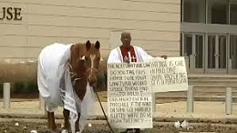 Click image for larger version  Name:horse in a dress.jpg Views:187 Size:8.9 KB ID:114587