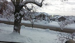 Click image for larger version  Name:snow (2).jpg Views:164 Size:421.9 KB ID:115611
