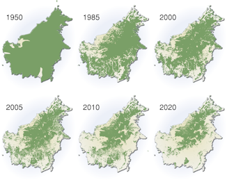 Click image for larger version  Name:borneo-deforestation-map.png Views:35 Size:92.0 KB ID:116208