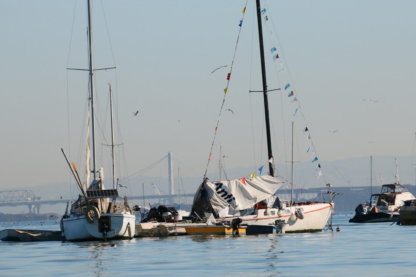 Click image for larger version  Name:Richardson Bay 123115 10.jpg Views:51 Size:335.2 KB ID:116510