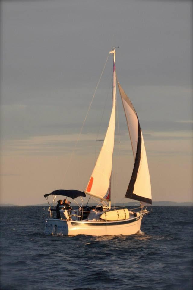 Click image for larger version  Name:seaward25_1.jpg Views:138 Size:52.0 KB ID:116800