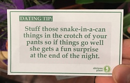 Click image for larger version  Name:Dating Tip 03.jpg Views:272 Size:57.9 KB ID:117793