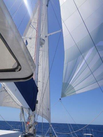 Click image for larger version  Name:Sails_Genoa&Reacher_Downwind-W&W.jpg Views:77 Size:27.4 KB ID:118934