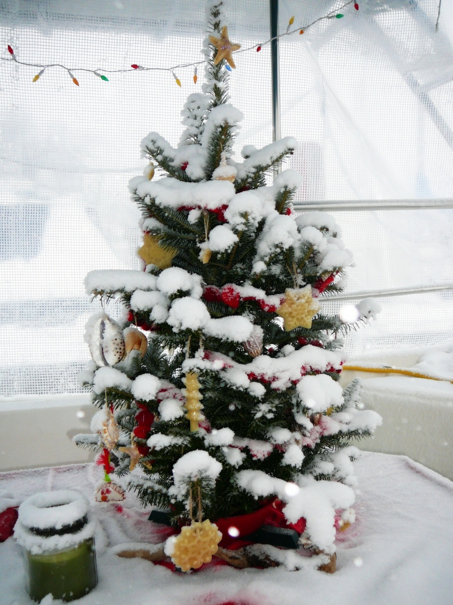 Click image for larger version  Name:snowed in 1.jpg Views:83 Size:432.9 KB ID:11952