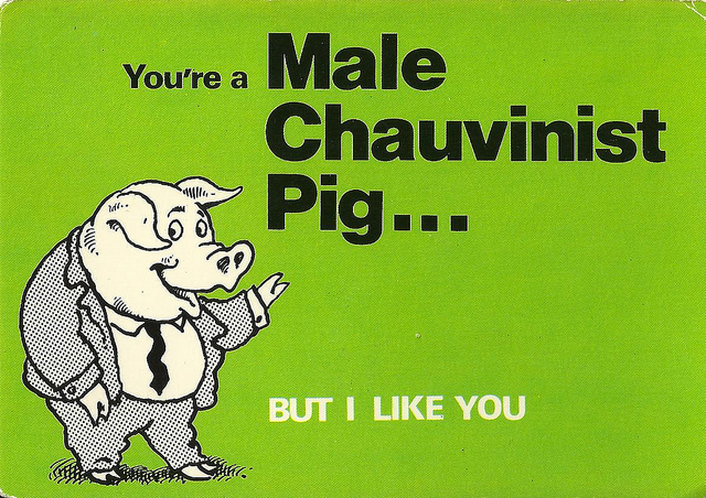 Click image for larger version  Name:chauvinist.jpg Views:54 Size:223.6 KB ID:120341