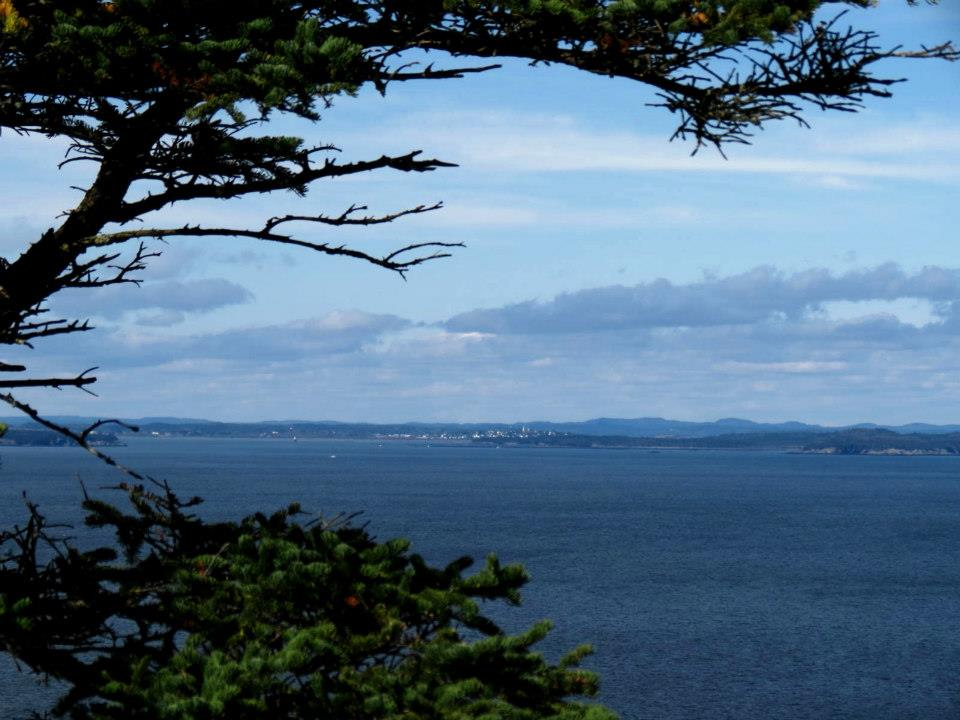 Click image for larger version  Name:west quoddy.jpg Views:50 Size:87.3 KB ID:121418