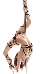 Click image for larger version  Name:Pole.png Views:166 Size:289.6 KB ID:125098