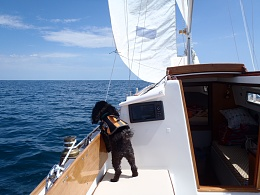 Click image for larger version  Name:25 cd sea trial 038.JPG Views:120 Size:282.8 KB ID:125298