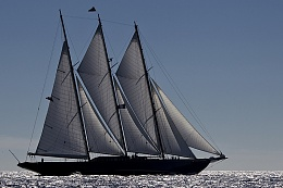Click image for larger version  Name:trysails.jpg Views:89 Size:332.6 KB ID:126942