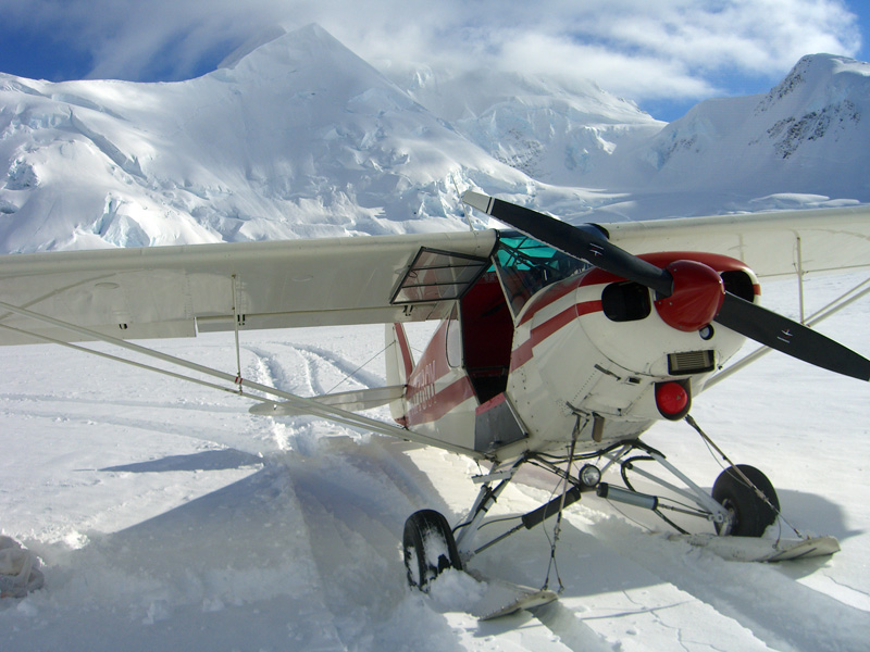 Click image for larger version  Name:Super cub.jpg Views:81 Size:187.5 KB ID:12996