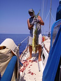 Click image for larger version  Name:fish2.jpg Views:263 Size:104.8 KB ID:1313