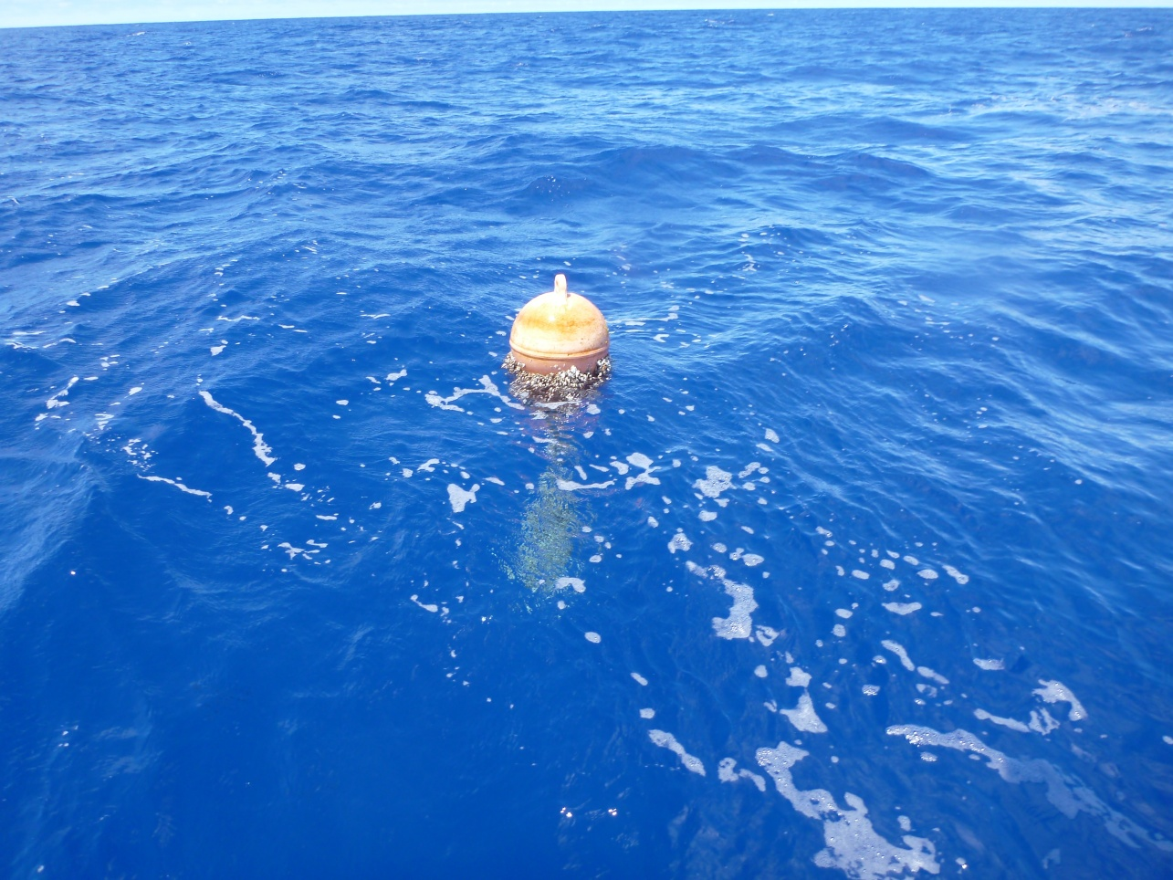 Click image for larger version  Name:pacific gyre trash.jpg Views:92 Size:432.6 KB ID:131497