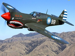 Click image for larger version  Name:P-40.jpg Views:65 Size:159.7 KB ID:133928