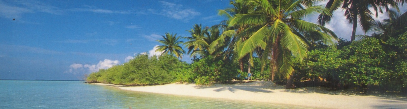Click image for larger version  Name:Richard's house Rawai Beach.jpg Views:135 Size:218.1 KB ID:13536