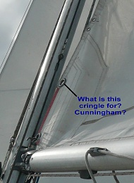 Click image for larger version  Name:cringle.jpg Views:522 Size:138.3 KB ID:13750