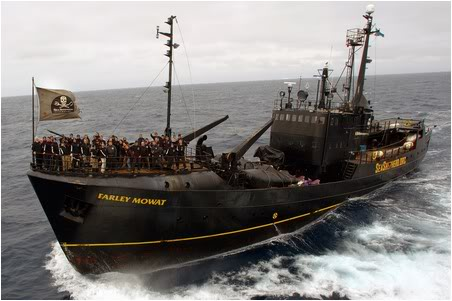 Click image for larger version  Name:sea-shepherd-ship-farley-mowat.jpg Views:568 Size:31.9 KB ID:13797