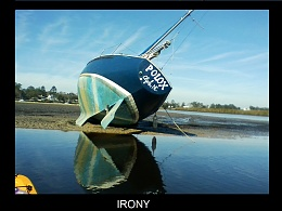 Click image for larger version  Name:IRONY.jpg Views:329 Size:233.2 KB ID:142358