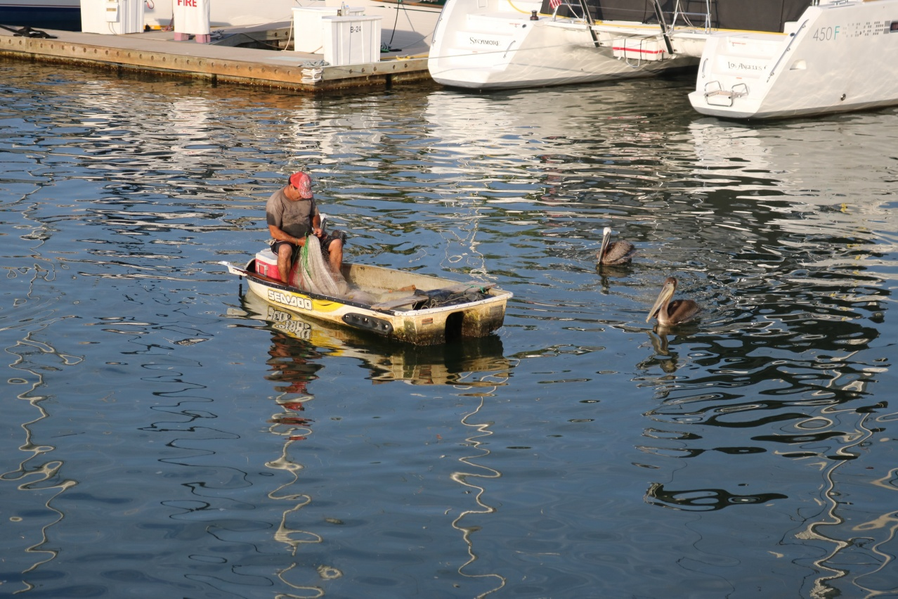 Click image for larger version  Name:sea doo boat.jpg Views:588 Size:435.6 KB ID:151736