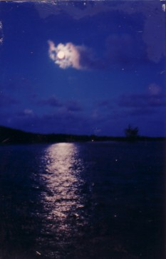 Click image for larger version  Name:Moonlight.jpg Views:88 Size:14.1 KB ID:15312
