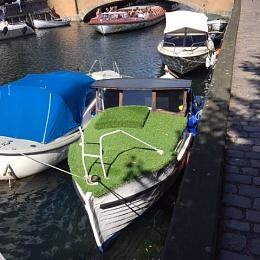 Click image for larger version  Name:grassboat.JPG Views:193 Size:117.8 KB ID:153839