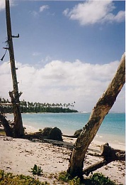 Click image for larger version  Name:RiateanBeach.jpg Views:3220 Size:29.6 KB ID:15726