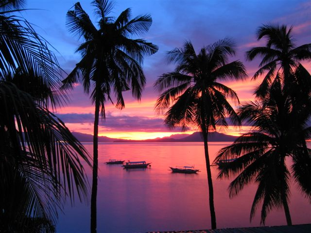 Click image for larger version  Name:Sunrise with  Palms and Bangkas.JPG Views:124 Size:63.1 KB ID:15848