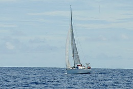Click image for larger version  Name:sailing 1.jpg Views:653 Size:23.5 KB ID:175571