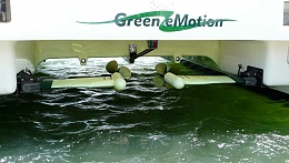Click image for larger version  Name:Green Motion.jpg Views:48 Size:411.1 KB ID:183124