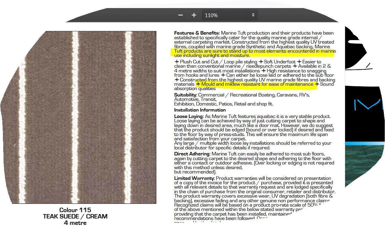 Click image for larger version  Name:Temp Carpet.JPG Views:71 Size:260.9 KB ID:187488