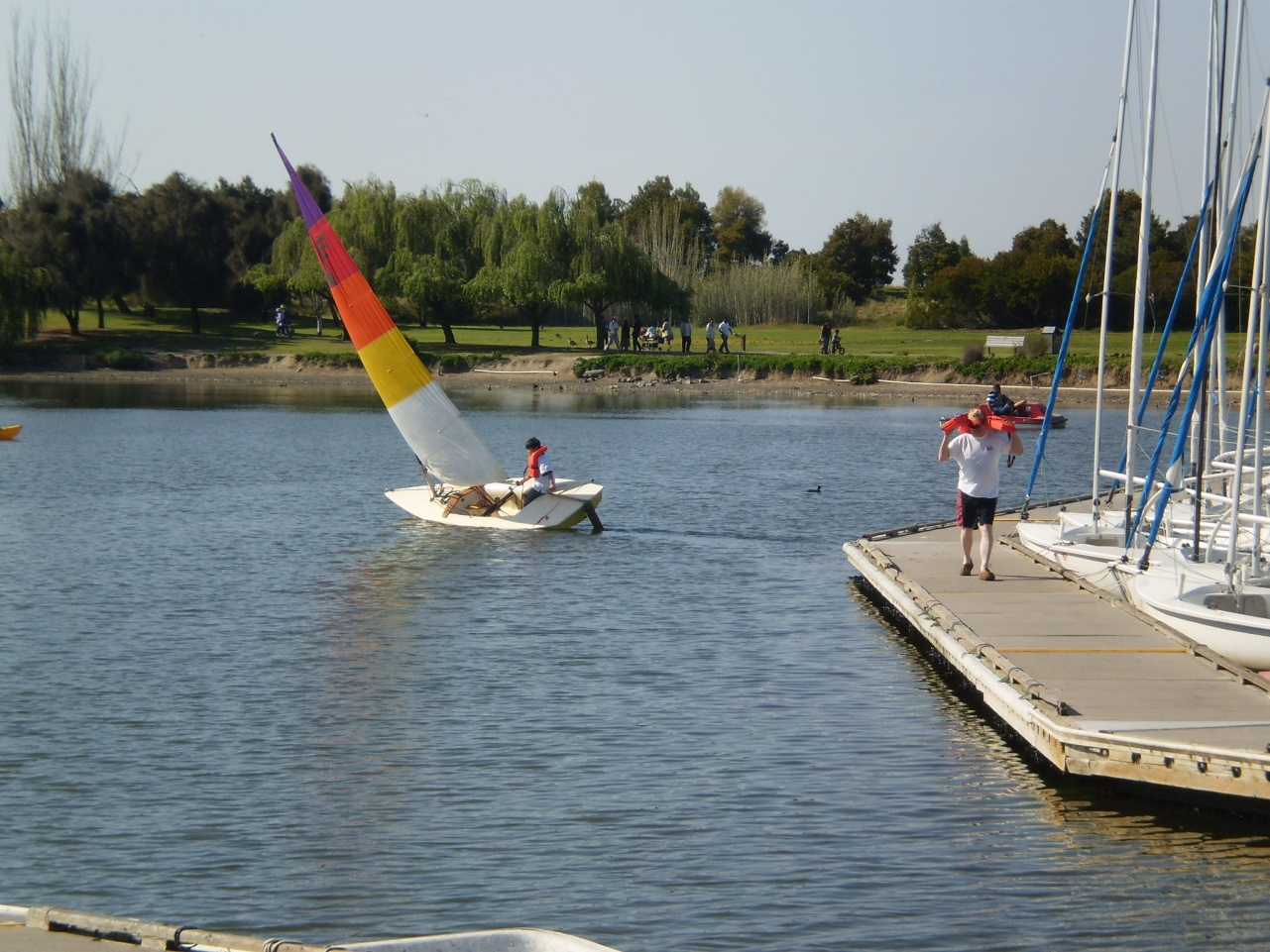 Good Beginner Boat ? - Cruisers & Sailing Forums