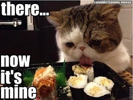 Click image for larger version  Name:cat with sushi.jpg Views:194 Size:40.3 KB ID:192593