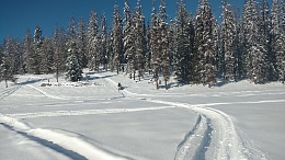 Click image for larger version  Name:snow.jpg Views:52 Size:420.8 KB ID:194494