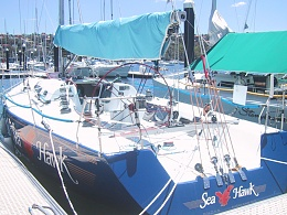 Click image for larger version  Name:Sea_Hawk.jpg Views:113 Size:428.2 KB ID:19614