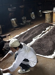 Click image for larger version  Name:0866-Coffee Roasting.jpg Views:52 Size:433.7 KB ID:200707