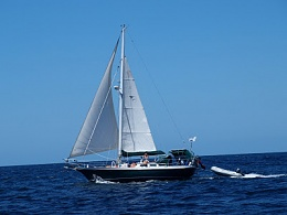 Click image for larger version  Name:Delphinus under sail 12.jpg Views:51 Size:27.1 KB ID:204272