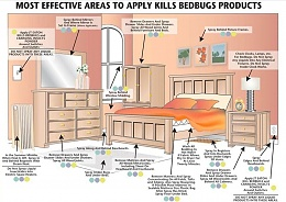 Click image for larger version  Name:Bed Bug Treatment Areas.jpg Views:48 Size:109.6 KB ID:204980