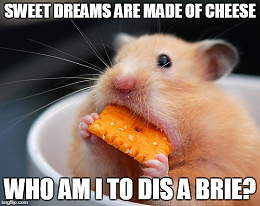 Click image for larger version  Name:cheese- 03.jpg Views:160 Size:63.7 KB ID:210999