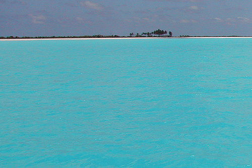 Click image for larger version  Name:Barbuda Turquoise.jpg Views:160 Size:113.9 KB ID:21151