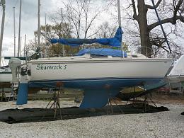 Click image for larger version  Name:Shamrock 5.jpg Views:167 Size:54.6 KB ID:213550