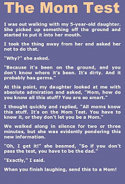 Click image for larger version  Name:MomTest.jpg Views:255 Size:161.5 KB ID:214757