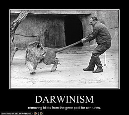 Click image for larger version  Name:darwin.jpg Views:574 Size:35.5 KB ID:217281